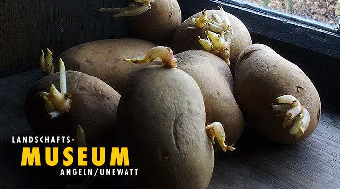ENTFÄLLT ---  Frühlings-Kartoffel-Aktion